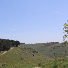 A Spinazzola, nel cuore del Parco dell'Alta Murgia, l'ultima tappa di Palestranatura