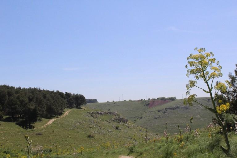 Parco dell'Alta Murgia