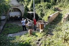"""Fontana """"San Francesco"""": il ritorno in vita grazie al volontariato"""