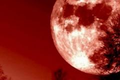 """Telescopi puntati per l'eclissi più lunga del secolo: ecco la notte della """"Luna rossa"""""""