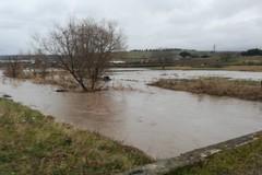 Maltempo, Coldiretti: «Centinaia di ettari allagati sulla Murgia»