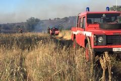 In fumo decine di ettari nella zona di Castel del Monte