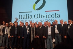 "Settore agricolo: AssoPr.Oli Bari e Bat aderisce a ""Italia Olivicola"""