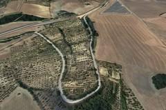 Cinque milioni di euro per la strada provinciale 4