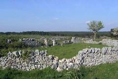 Protocollo parchi in Puglia: manutenzione e riforestazione
