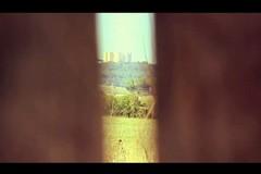 La Strada dell'Olio Castel del Monte diventa un cortometraggio
