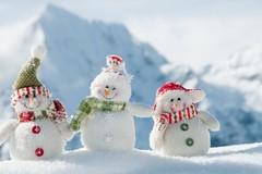 Neve, domani scuole chiuse a Spinazzola