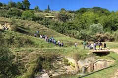 """""""In cammino nei parchi"""", 200 escursionisti a Spinazzola"""
