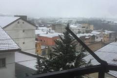 Tornano neve e freddo a Spinazzola. FOTO E VIDEO