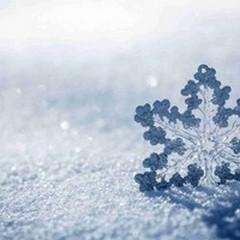 Ritorna la neve