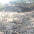 Incendi boschivi 2018: parte la campagna dei Carabinieri forestali anche a Spinazzola