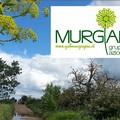 Il GAL Murgia-Più presenta a Spinazzola i prossimi avvisi pubblici