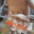 La Capitaneria di Barletta sequestra 49 kg di prodotti ittici nella Bat
