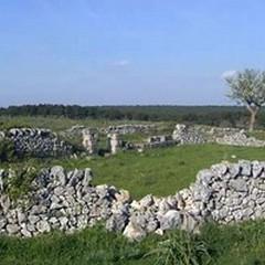 Parco Nazionale dell'Alta Murgia, esempio emblematico di parco rurale