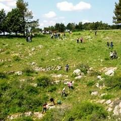 Escursione tra natura e cultura