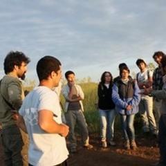 "Parco Alta Murgia, III Summer School dedicata al  ""lupo """