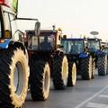Oggi a Bari migliaia di giovani agricoltori per protestare contro la Regione