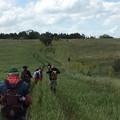 Dalla Regione Puglia in arrivo un nuovo finanziamento per il Bosco Gadone-Turcitano