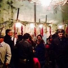 Torna la Sagra del Fungo Cardoncello, a Spinazzola il 3 e 4 novembre