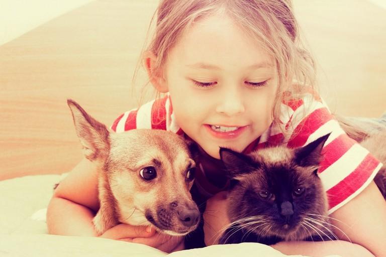 bimba cane e gatto
