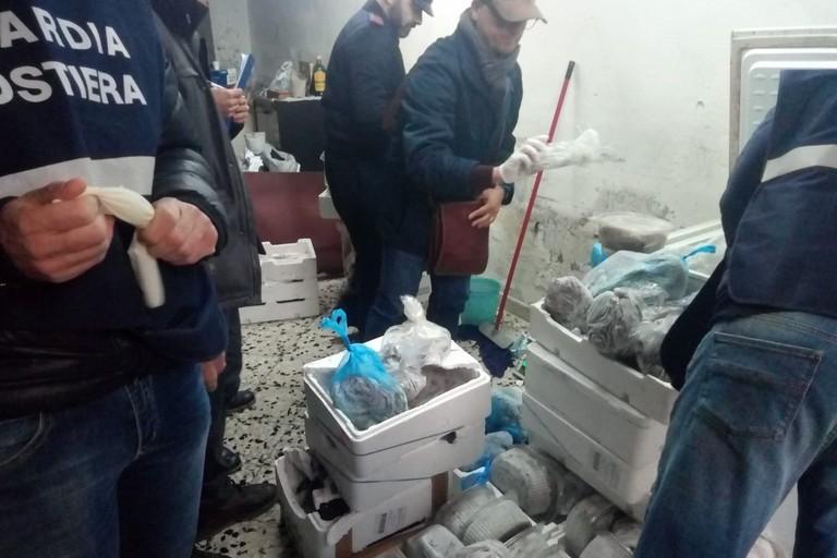 sequestro di pesce da parte della Guardia Costiera