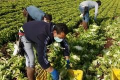 Protesta in Prefettura per 20mila lavoratori agricoli della Bat esclusi dai ristori