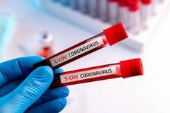 Coronavirus, aumentano i casi nella Bat: +127 in un giorno