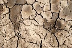 """Cia Puglia: """"La regione si desertifica, col PNRR occorrono invasi e depuratori"""""""