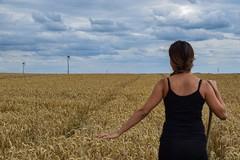 Al via il censimento dell'agricoltura, coinvolti i Centri di Assistenza Agricola