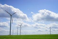 Eolico e fotovoltaico, LIPU Puglia: «Una barbarie, la Giunta protegga il territorio»