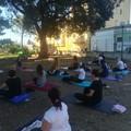 Yoga all'aria aperta con Legambiente Spinazzola