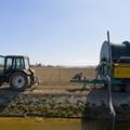 Sostegno per la diversificazione agricola, il bando del GAL Murgia Più