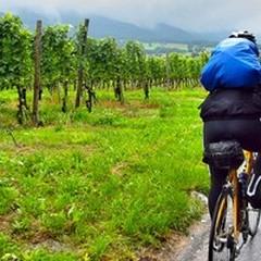 Prima cicloturistica tra cardoncelli e natura a Spinazzola