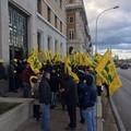 In fumo olivicoltura pugliese 317mln euro persi e 1mln giornate lavoro azzerate: la protesta di Coldiretti