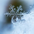 Calano le temperature, in Puglia arriva il gelo