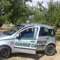 Operazioni di contrasto alla criminalità rurale nella Bat