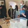 Preziosi reperti trovano casa al Museo Civico di Spinazzola