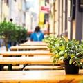 Il Comune di Spinazzola concede occupazione del suolo pubblico per dehors
