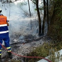 Campagna Antincendio Boschivo 2015. Nella BAT 329 interventi