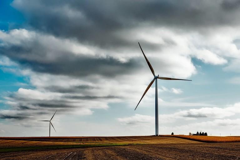 Minaccia eolica, Cripezzi (Lipu): «Urge vincolo paesaggistico e intervento delle istituzioni»